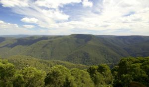 Barrington Tops National Park - Accommodation Whitsundays