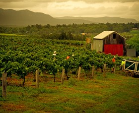 Around Hermitage Wine and Food Trail Hunter Valley - Accommodation Whitsundays