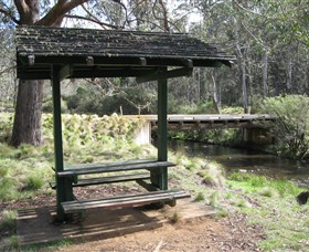 Barrington Tops State Forest - Accommodation Whitsundays