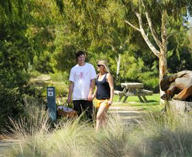 Sale Common Wetlands Walk - Accommodation Whitsundays