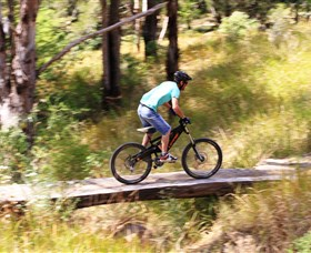 The Steps Mountain Bike Park - Accommodation Whitsundays
