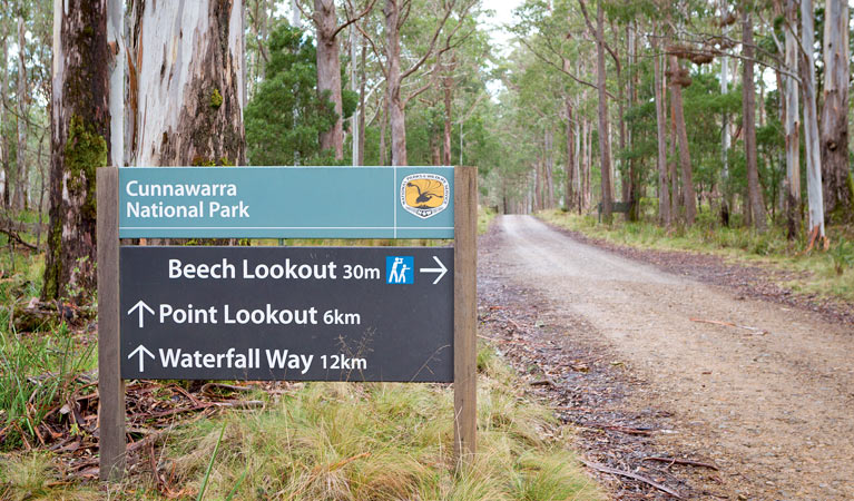Beech lookout - Accommodation Whitsundays