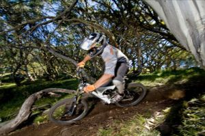 All Terrain Cycles - Accommodation Whitsundays