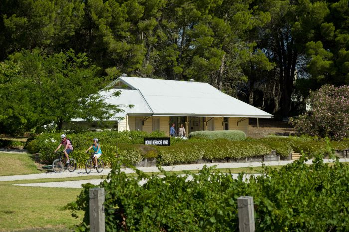 Tour de Vines - Accommodation Whitsundays