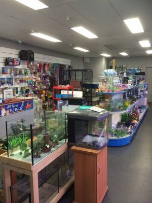 Nambour Pet Shop - Accommodation Whitsundays