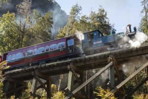 West Coast Wilderness Railway Queenstown Explorer from Strahan - Accommodation Whitsundays