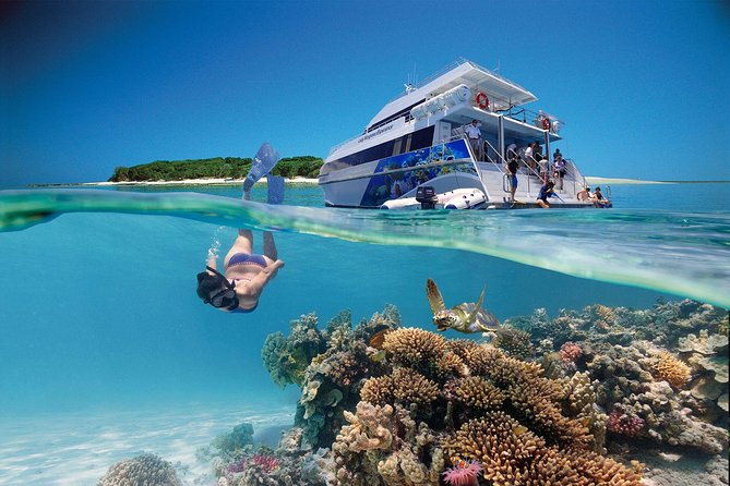 3-Day Southern Great Barrier Reef Tour Including Lady Musgrave Island - Accommodation Whitsundays