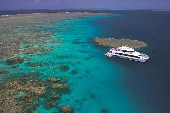 Silversonic Outer Great Barrier Reef Dive and Snorkel Cruise from Port Douglas - Accommodation Whitsundays