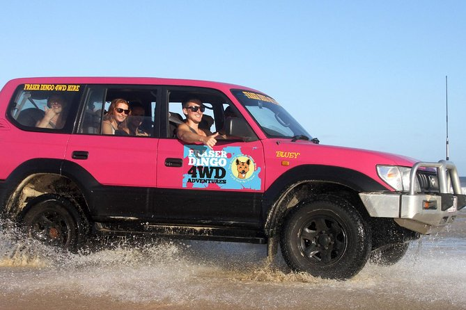 2-Day Fraser Island 4WD Tag-Along Tour at Beach House from Hervey Bay - Accommodation Whitsundays