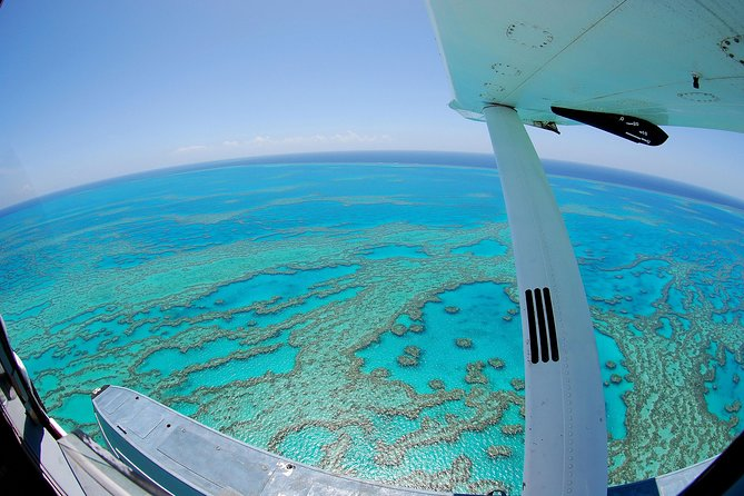 Best of the Whitsundays Seaplane Tour Including Whitehaven Beach Landing - Accommodation Whitsundays