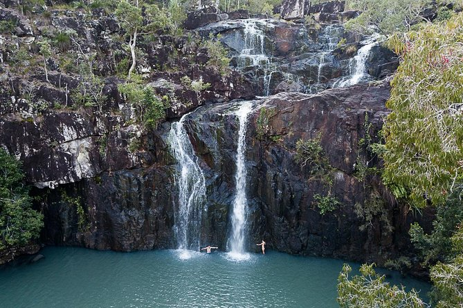 Tropical Rainforest  Waterfalls  Guided Walk  from Airlie Beach Whitsundays - Accommodation Whitsundays