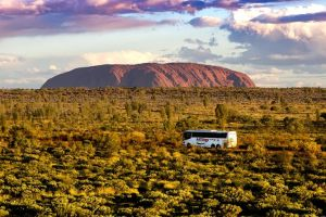 Coach Transfer from Kings Canyon Resort to Ayers Rock Resort - Accommodation Whitsundays
