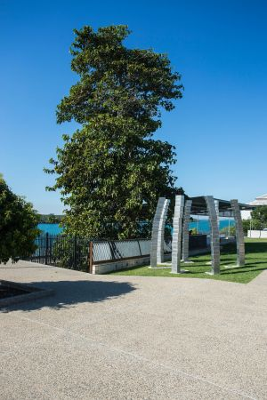 A Cup of Culture in Mackay - Accommodation Whitsundays