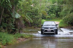 The Pioneer Valley and Eungella National Park - Accommodation Whitsundays