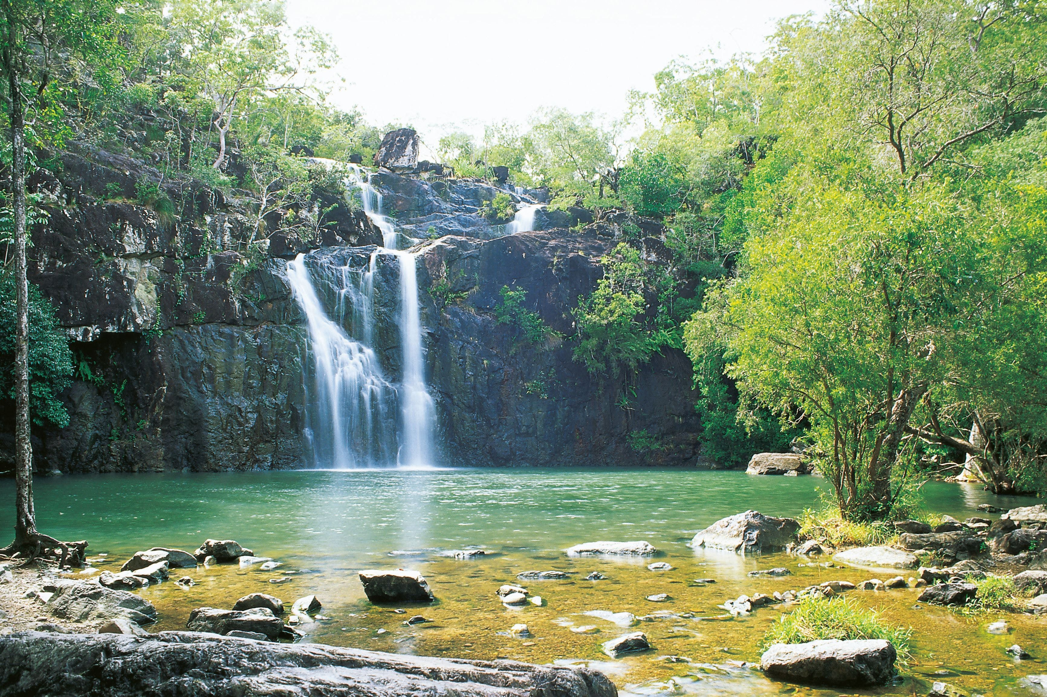 Airlie Beach to Cedar Creek Falls - Accommodation Whitsundays