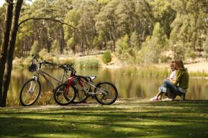 Creswick Regional Park - Accommodation Whitsundays