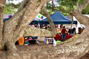 Eumundi - Accommodation Whitsundays