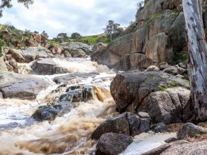 Mannum Waterfalls - Accommodation Whitsundays