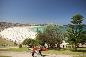 Bondi to Coogee Coastal Walk - Accommodation Whitsundays