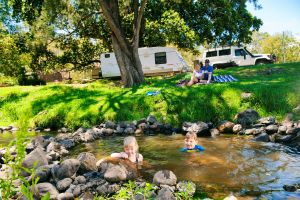 Darlington Park - Accommodation Whitsundays