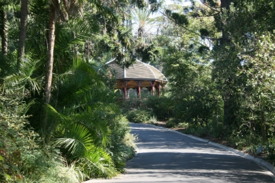 Royal Botanic Gardens Victoria - Accommodation Whitsundays