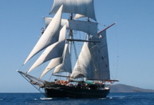 Australian Tallship Cruises - Accommodation Whitsundays