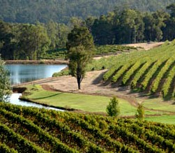 Brookhampton Estate Vineyard - Accommodation Whitsundays