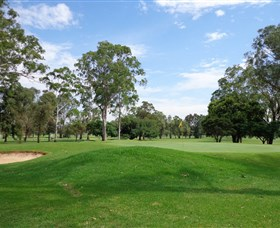 Singleton Golf Club - Accommodation Whitsundays