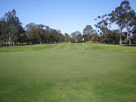 Maffra Golf Club - Accommodation Whitsundays