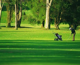 Foster Golf Club - Accommodation Whitsundays