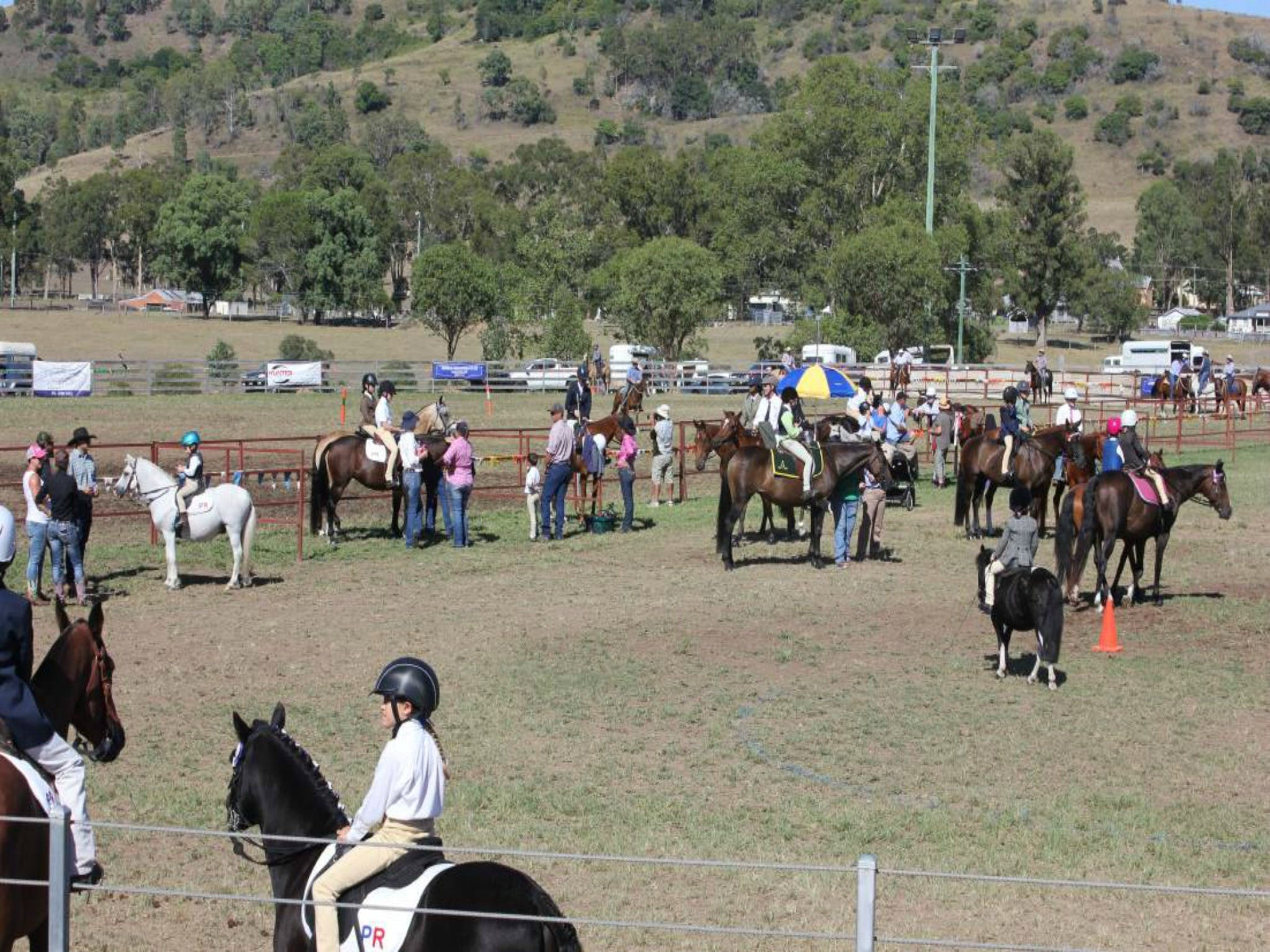 Gresford Agricultural Show - Accommodation Whitsundays