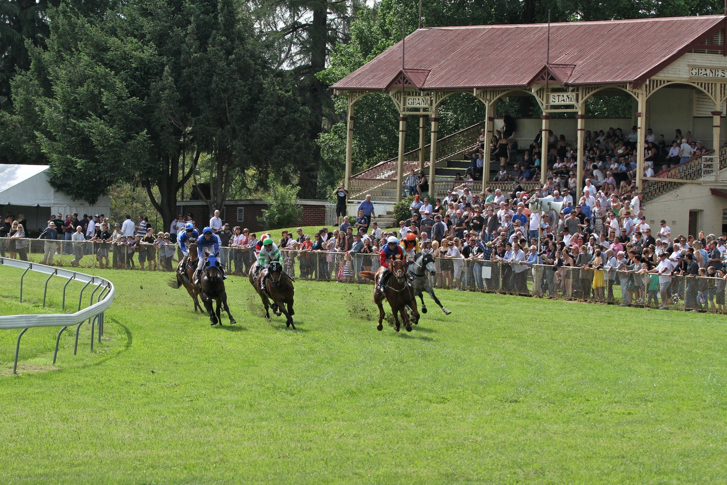 Tumut Derby Day - Accommodation Whitsundays