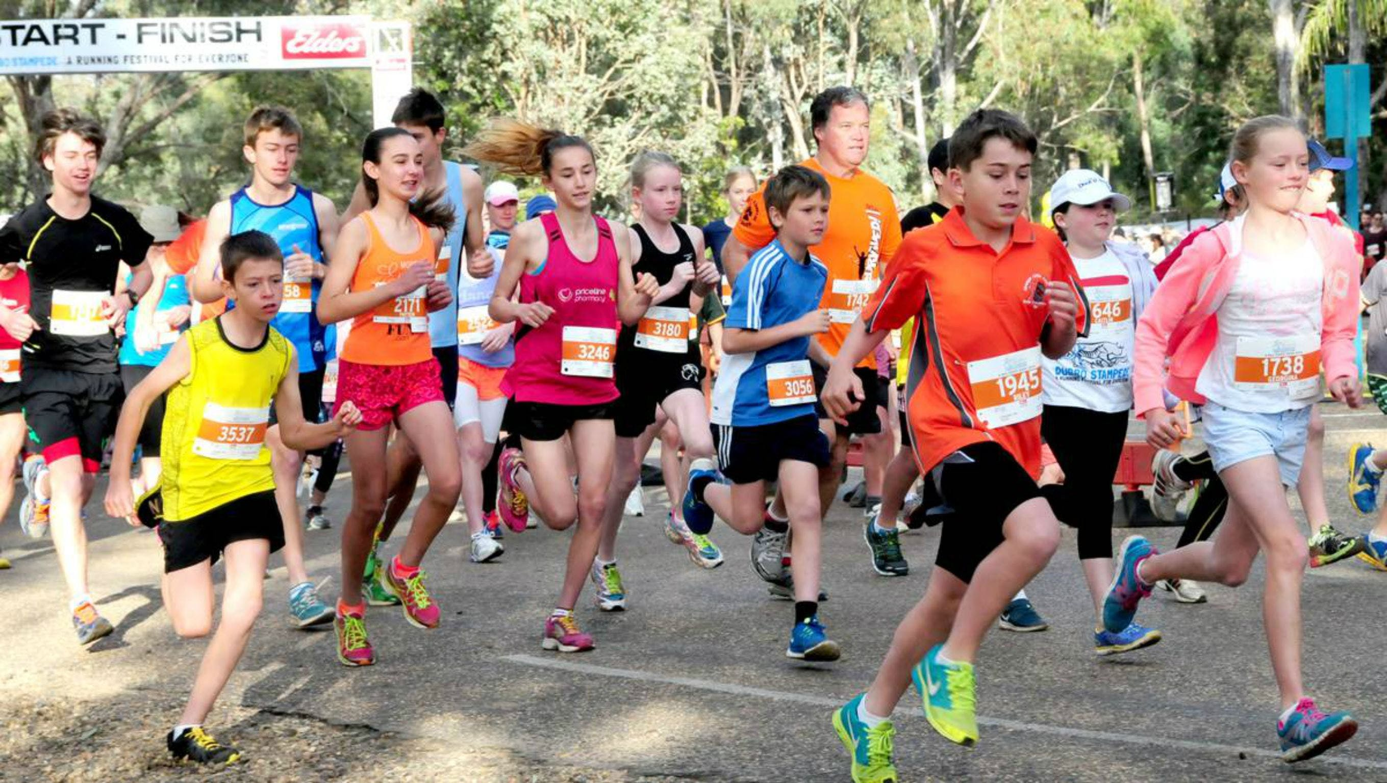 MAAS Group Dubbo Stampede Running Festival - Accommodation Whitsundays