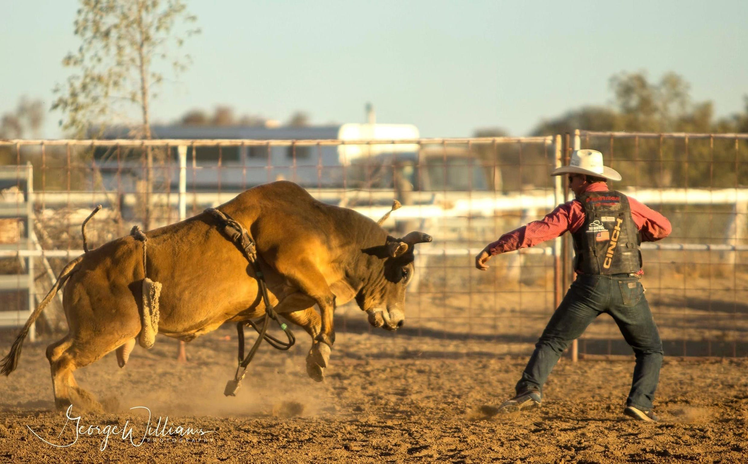 Walgett Charity Bushman's Carnival Rodeo and Campdraft - Accommodation Whitsundays