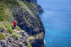 Seven Peaks Walk at Pinetrees Lord Howe Island - Accommodation Whitsundays