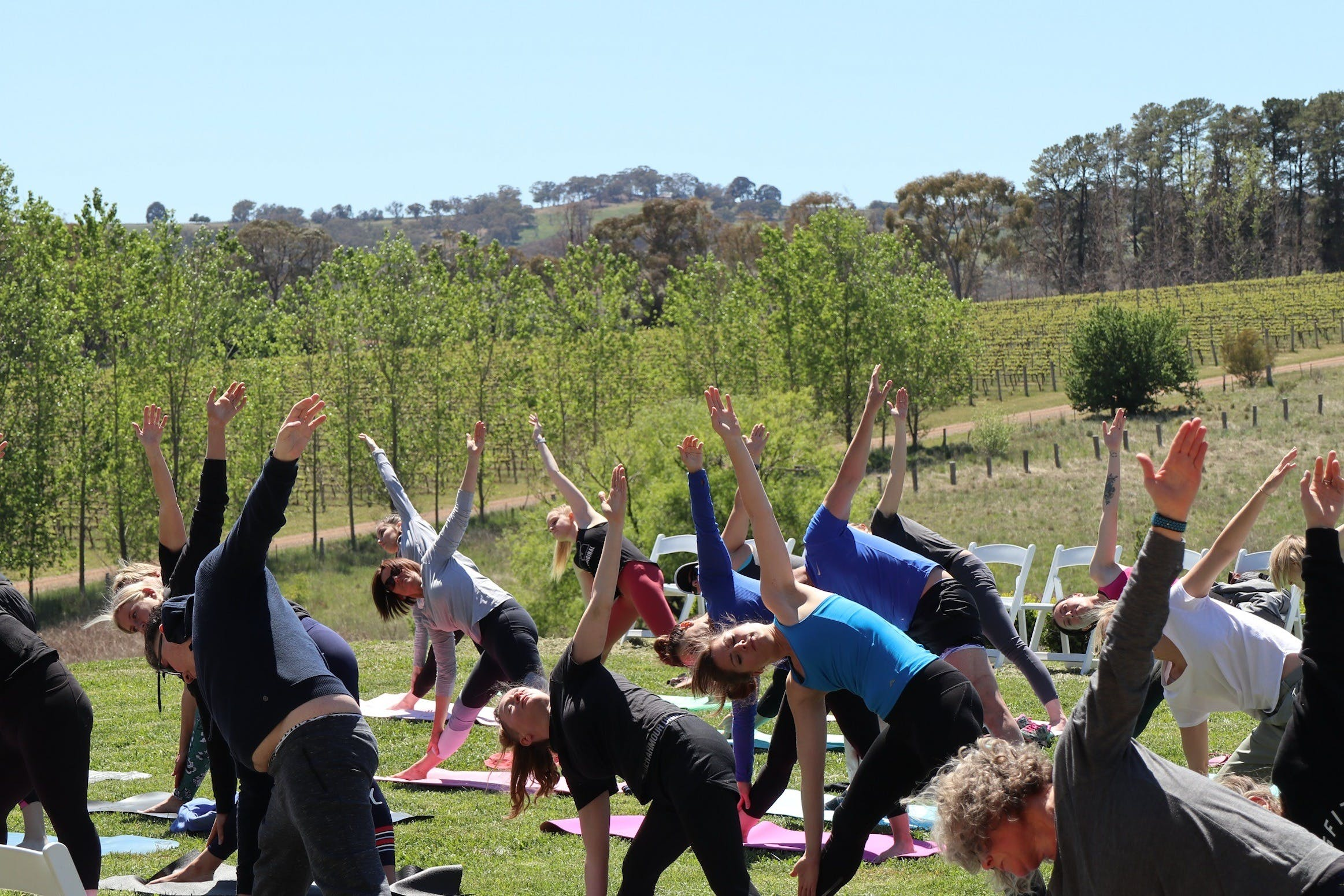 Yoga in the Vines - Accommodation Whitsundays