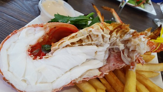 Tasmanian Gourmet Seafoods - Accommodation Whitsundays