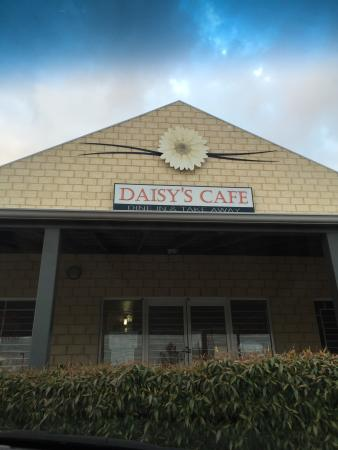 Daisy's Cafe - Accommodation Whitsundays
