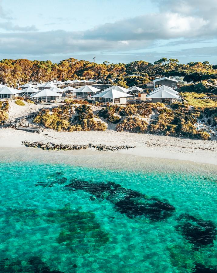 Discovery Rottnest Island - Accommodation Whitsundays
