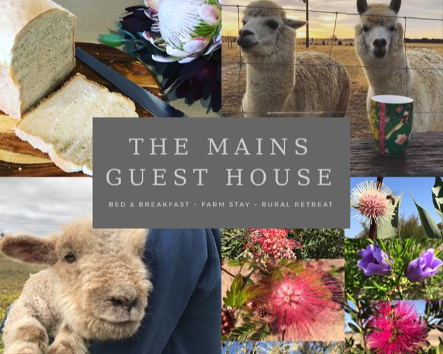 The Mains Guest House - Accommodation Whitsundays