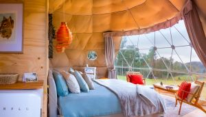 Domescapes in the Vines - Accommodation Whitsundays